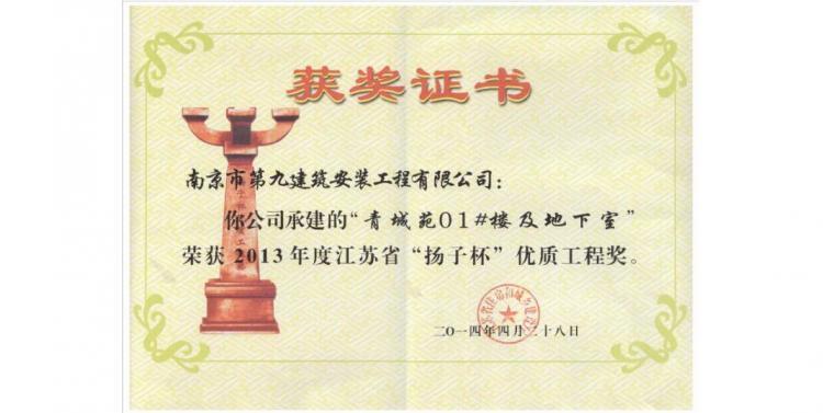 扬子杯-青城苑1#及地下室-2013-第1张图片-南京九建