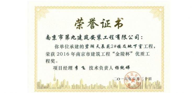 金陵杯-碧湖天辰1#楼-2016