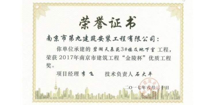 金陵杯-碧湖天辰3#楼-2017